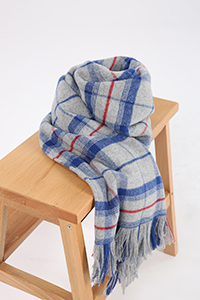 Tasseled Plaid Scarf